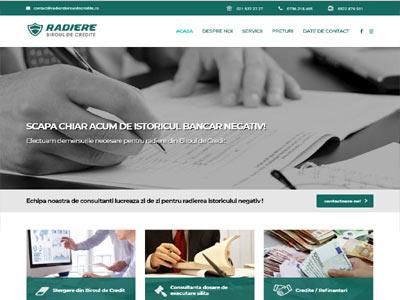 Radiere Biroul de credite - realizare site web