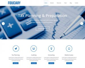 realizare site web contabil